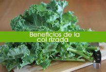 10 beneficios de la col rizada o kale para tu salud y cómo comerla