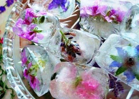 Рецепты кубиков льда для лица фото