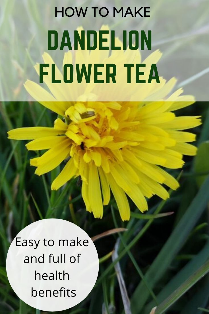 How To Make Dandelion Flower Tea In 2020 Dandelion Tea Dandelion Tea Benefits Dandelion Health Benefits