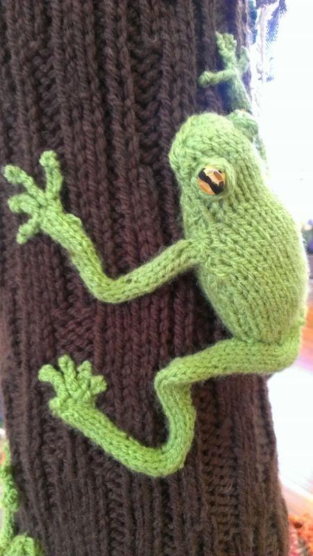 Tree frog by Meg Buchtmann