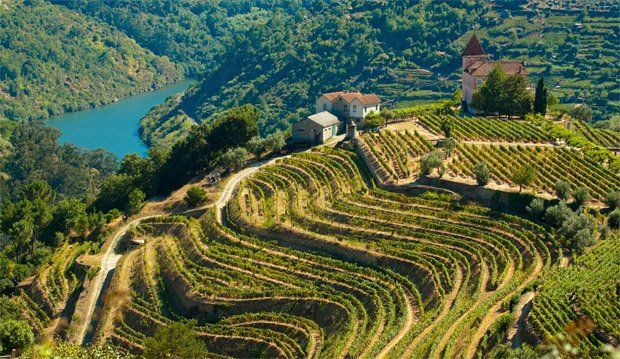 Roger Voss from Wine Enthusiast Magazine suggests Douro Valley, Portugal as a Wine Travel Destination for 2013    Northern Portugal's claim as the most beautiful wine region in the world is supported by the grandeur of its landscape and wines.