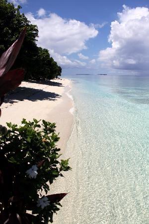 Pom Pom Island, Sabah, Malaysia.