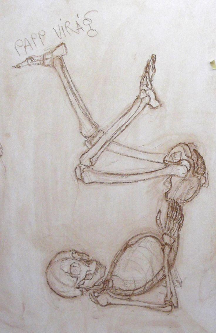 anatom study - chalk on board Virag Papp, 2013 #skeleton #anatomy #study