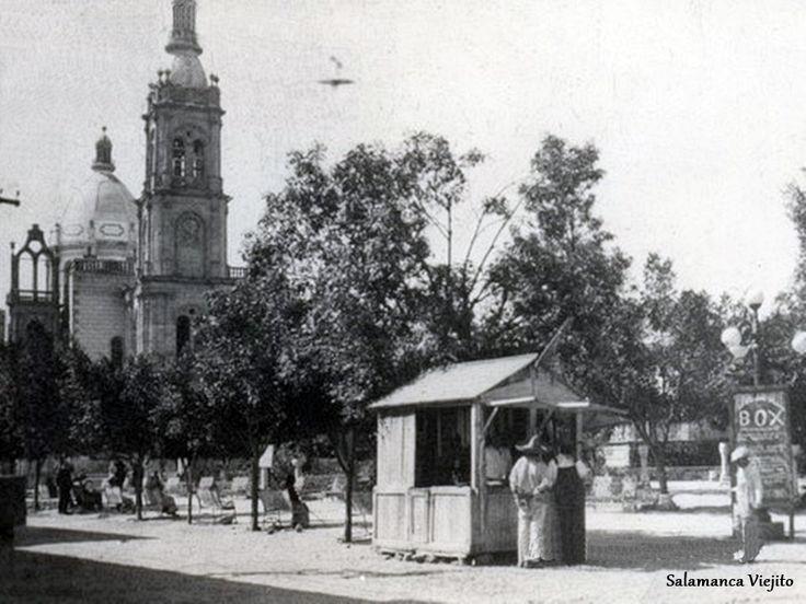 Plaza de la constitucion y templo de salamanca guanajuato for 7 jardines guanajuato