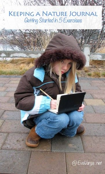 Keeping a Nature Journal:  Getting started in 5 exercises ⎜EvaVarga.net