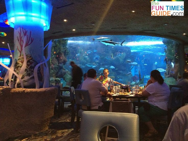 The Aquarium Restaurant inside the Opry Mills Mall is an underwater dining adventure that's hard to pass up! Not to mention the fact that it's Nashville's ONLY aquarium. The Aquarium Restaurant is a fun dining adventure for adults and kids alike. Here's our review.