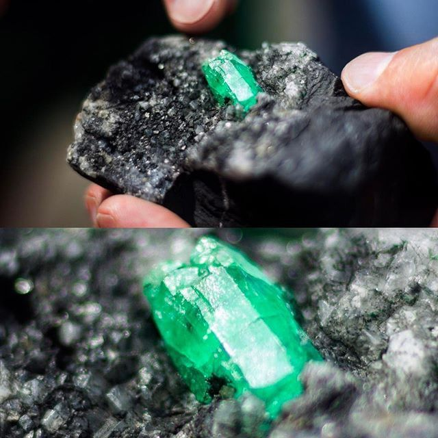 Gaze at the kryptonite colour......From my own collection, not for sale. Photo by @jnicolastorres #rough #emerald #emeralds #colombianemerald #colombianemeralds #gem #gems #mine #mines #mining #jewellery #jewelry #boyaca #colombia #colombian