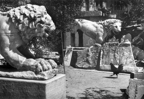Και ως φωτογράφος ο Α. Εμπειρίκος ήταν ιδιαίτερα γνωστός, αναδεικνύοντας την πολυσχιδή προσωπικότητας του.