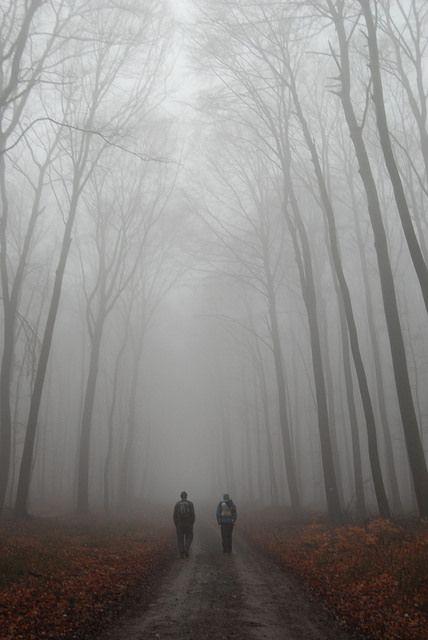 Foggy winter hike in Slovakia