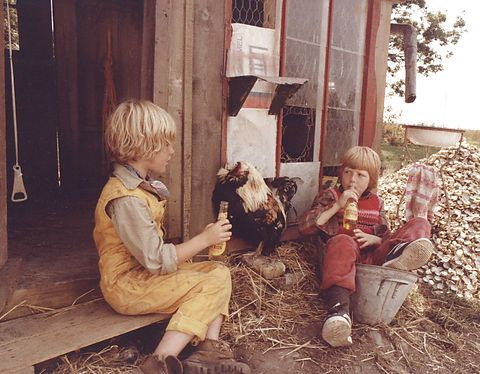 Little Virgil in his hen house. From the danish film Little Virgil and Orla Frogsnatcher