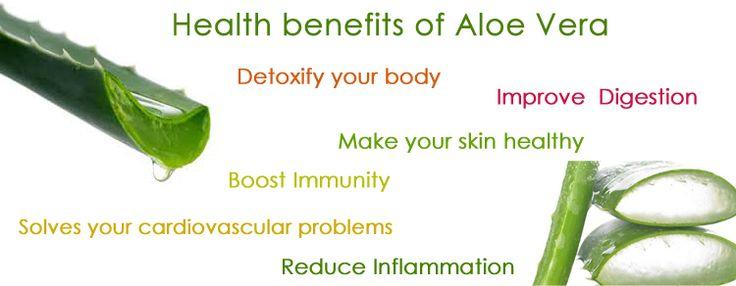 Health benefits of Aloe Vera   http://aloeliving.net/aloe-vera
