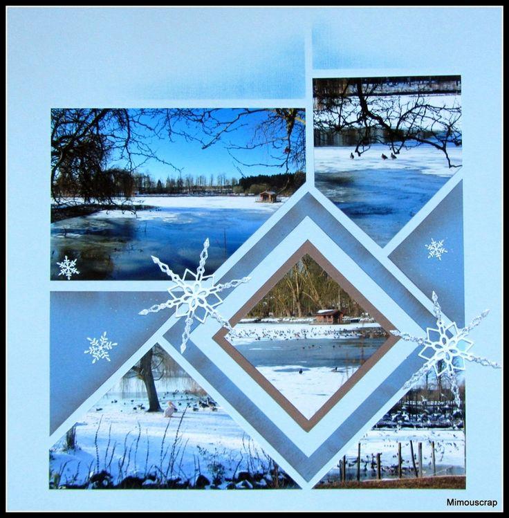Pairi Daiza - Les oiseaux sur l'étang gelé !
