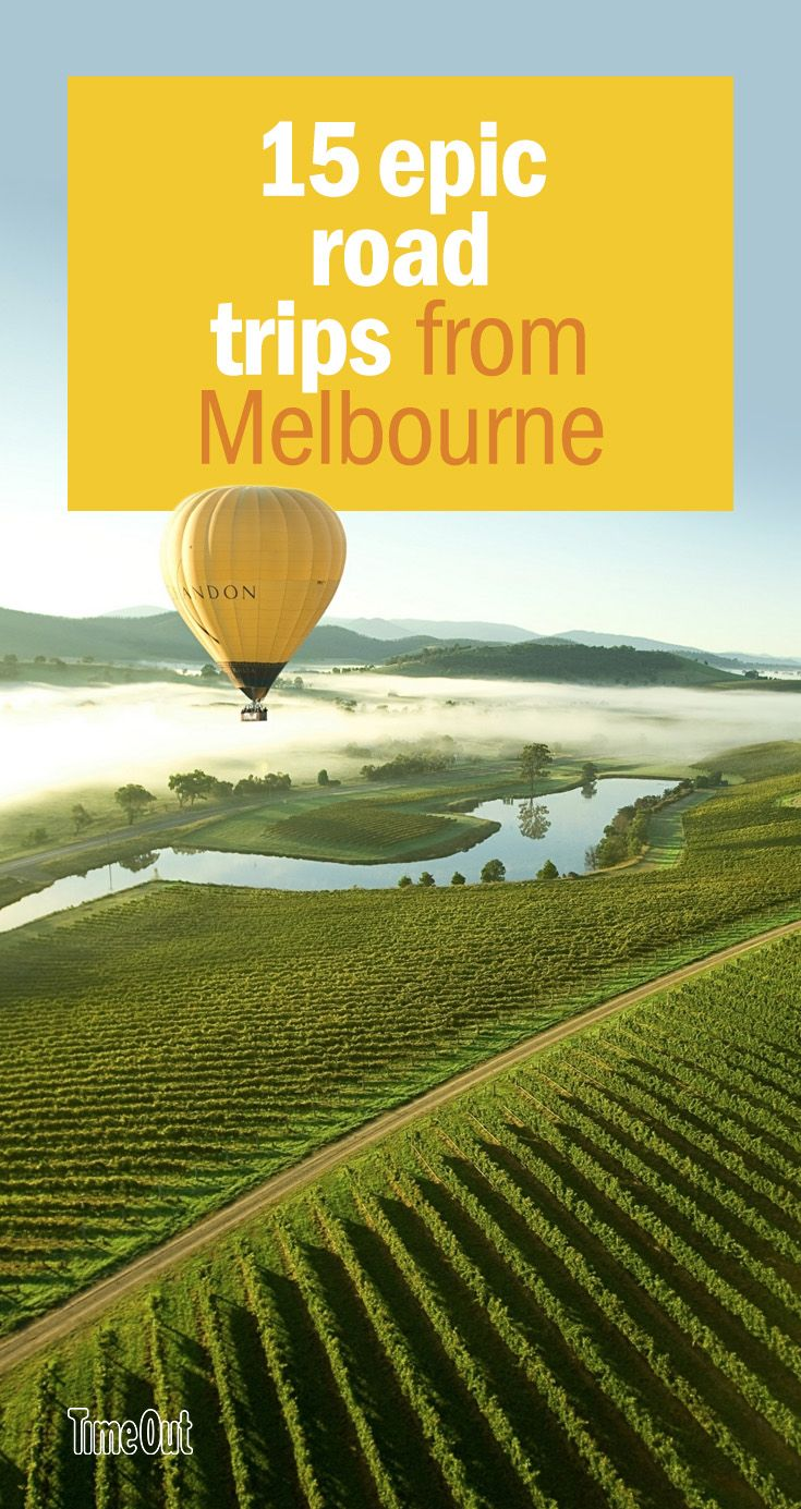 These day trips from Melbourne are paved with cool things to see and do, and driving means you won't miss a thing along the way.
