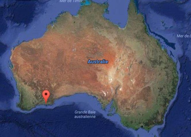 #Australie : L'étrange attaque dont a été victime un adolescent - Zinfos 974: Zinfos 974 Australie : L'étrange attaque dont a été victime…
