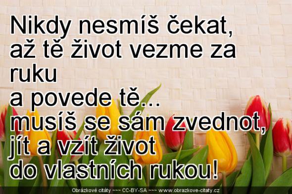2013-03-24_20-50-50_www.obrazkove-citaty.cz