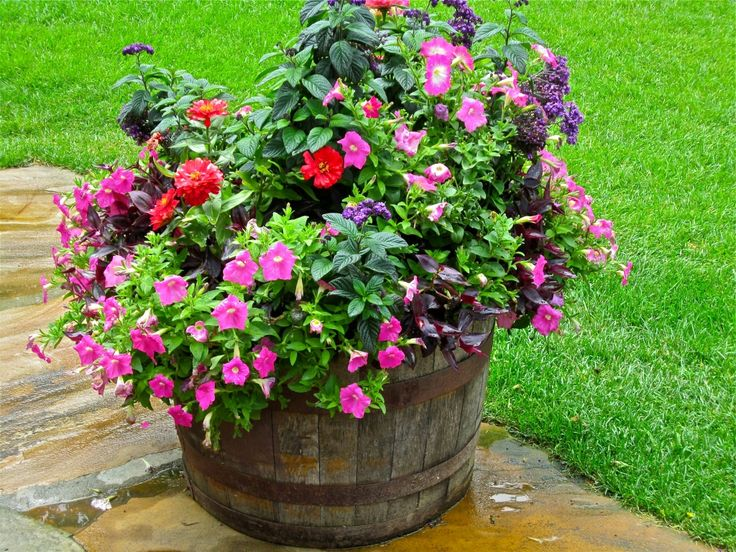 17 best images about flowers on pinterest pewter tea for Flower planter ideas