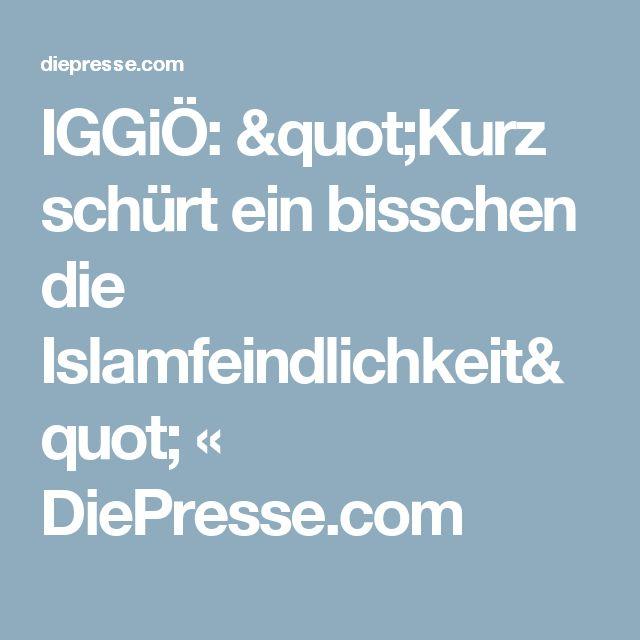 """IGGiÖ: """"Kurz schürt ein bisschen die Islamfeindlichkeit"""" « DiePresse.com"""
