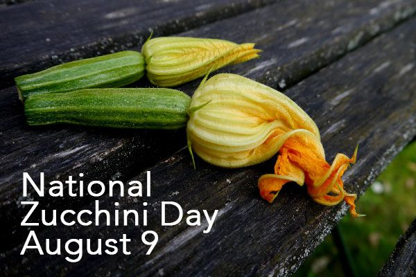 National Zucchini Day - August 9 - From Scratch Magazine