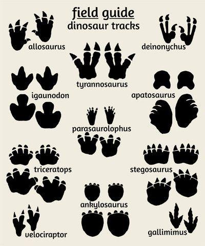 Dinosaur Nursery Art, Field Guide to Dinosuar Tracks | Art for Nursery : Alley Kids