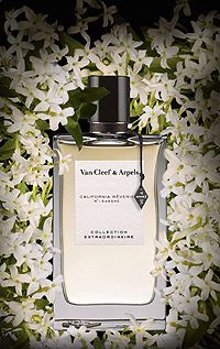 Collection Extraordinaire California Reverie by Van Cleef & Arpels is an animalic, beeswax, vanillic, white Floral fragrance with mandarin orange and neroli in the top. Jasmine and plumeria in the middle. Beeswax and vanilla in the base. - Fragrantica