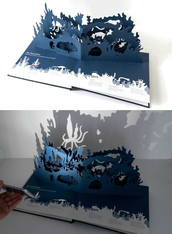 The Midnight Creatures Pop-Up Book is so cool! Shine a flashlight through and kids can search for the nocturnal animals hidden in the cut paper