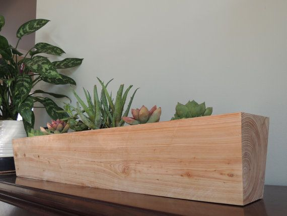 Tapered cypress succulent planter for six cactus planter for Wooden cactus planter