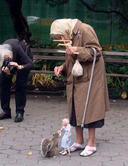 Little Old Lady uses a marionette to feed the squirrel nuts... How sweet is she!
