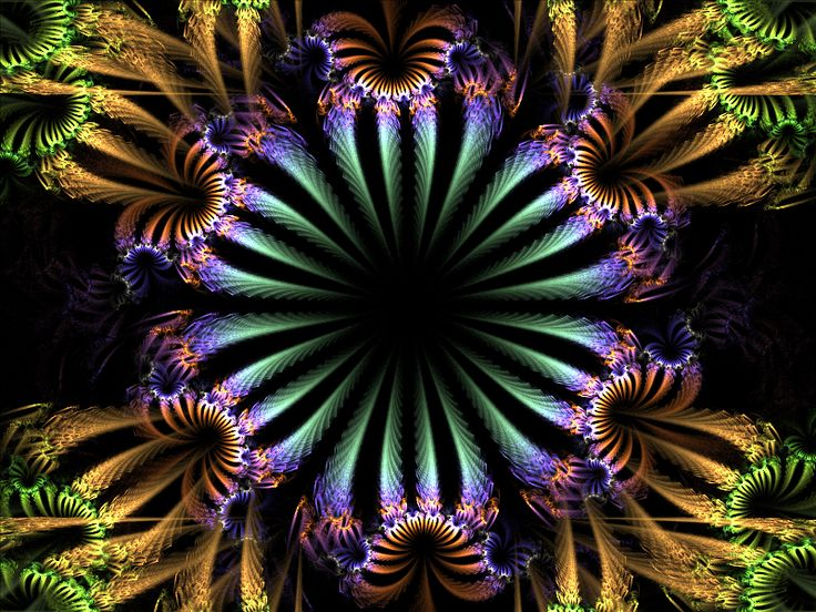 Pin By Carolyn Pranke On Fractals And Other Forms Of: Colourful Plant