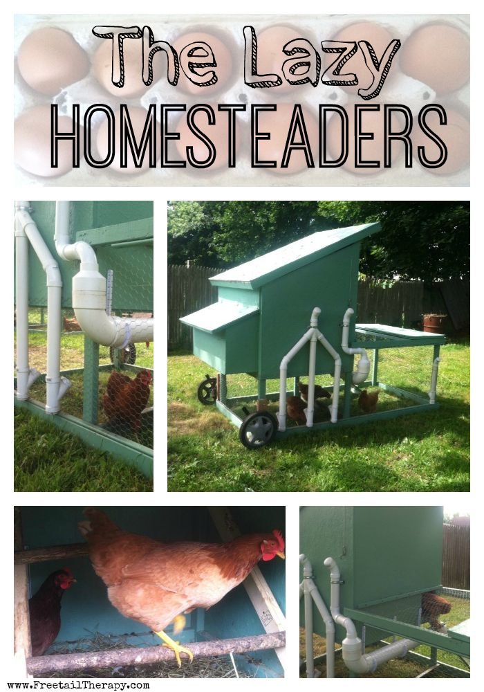 Lazy Homesteading? How is that even possible!?