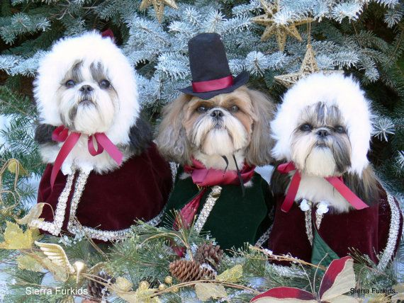 Shih Tzu Dog Christmas and New Year Card by furkids3 on Etsy, $3.00