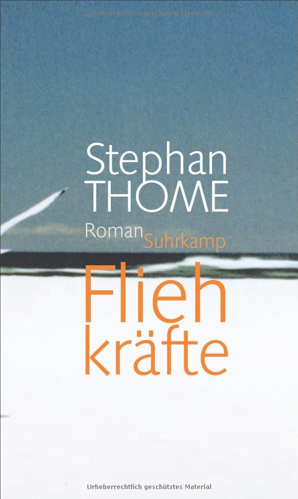 Fliehkräfte: Roman: Amazon.de: Stephan Thome: Bücher