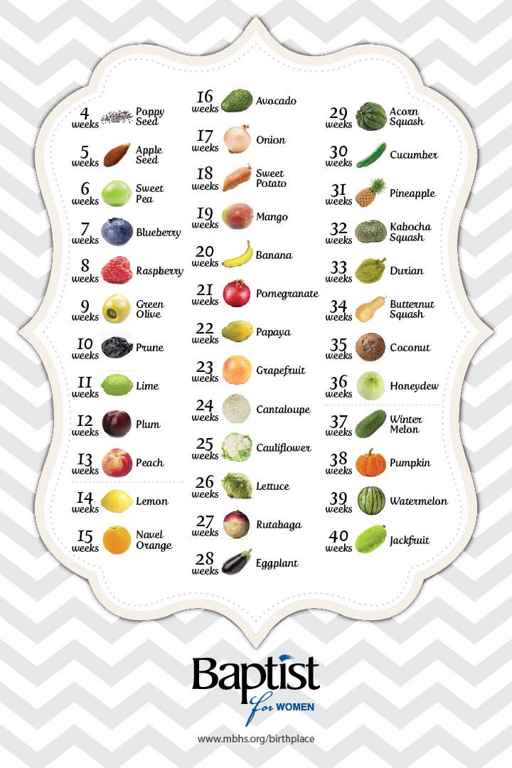 See how big your baby is week by week during your ...