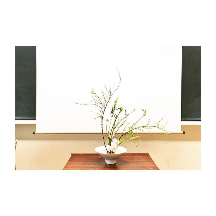 "179 Likes, 1 Comments - Tanaka Ikebana School (@tanakaikebanaschool) on Instagram: ""#ikebana #nara #fashion #flowers #artflower #池坊 #ikenobo #いけばな #生け花 #華道 #雪柳 #フリージア #タマシダ #スイートピー…"""