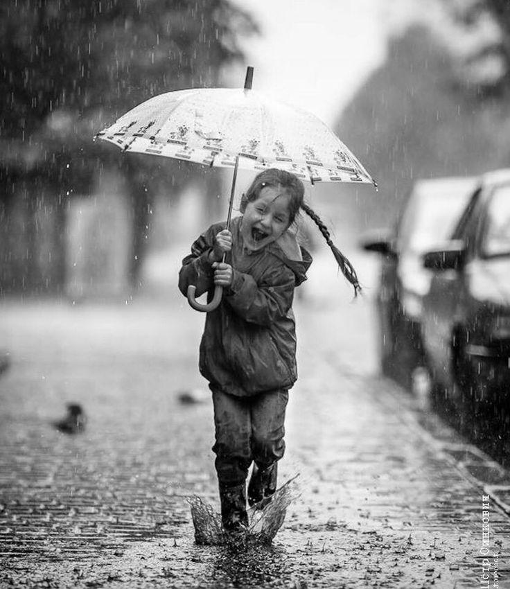 Картинки под дождем веселые