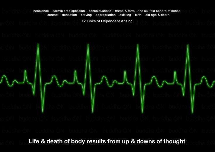 잡생각이 그렇게 중요할 줄은...  복사 http://buddha-on.net/220110976950   일이백 년 역사의 부채과자랑 달리,  자그만치 몇 천 년 동안 지속되어 온 기업이 있다면  그건 바로 종교라는 이름의 기업이다.  인간의 근원적 문제인 죽음과 그 너머를 다루고 있기 때문.  그럼, 불교에 있어 죽음이란 무엇일까?  12연기법에서  '삶과 죽음'은 '분별적 사유'의 결과물이라 꼬집는다.   번뇌망상의 부침이 생사의 그것과 정확히 일치한다는 말이다.  그저 몇 십년 살다 죽는 인생이 순간순간 떠오르는 망상 때문이었다니...  저 모니터에는 심장 박동이 리듬감 있게 움직이고 있다.  보라, 저 건강한 삶을...  더 자세히 보라, 힘찬 번뇌와 저 현란한 육도윤회를...  '생사는 생각思'