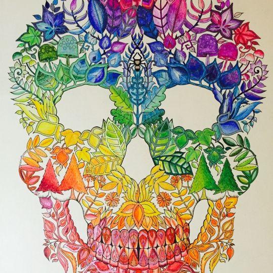 Skull From Johana Basfords Enchanted Forest Using Pencils Gel Pens