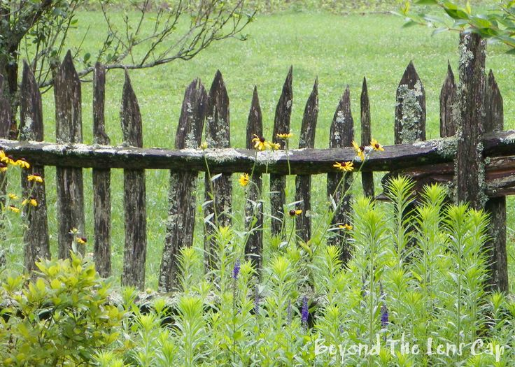Rustic wood fence designs rustic wood fences rustic for Rustic garden gate designs