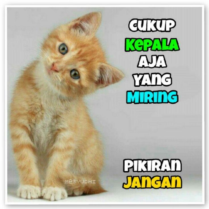 #miring