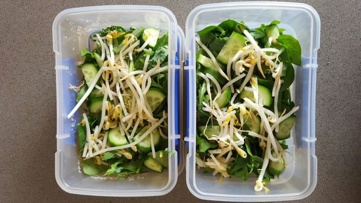 Food Preparation-Green salad. Spinach, rocket, cucumber, sprouts.