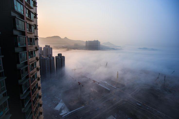 foggy morning -