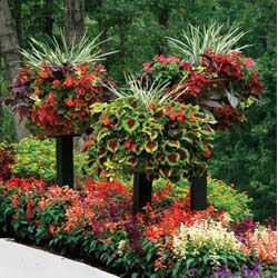 I love these side planting baskets!: Gardens Ideas, Wood Posts, Plants Stands, Color, Flowers Beds, Pretty Flowers, Pvc Pipes, Trees Stumps, Border Columns