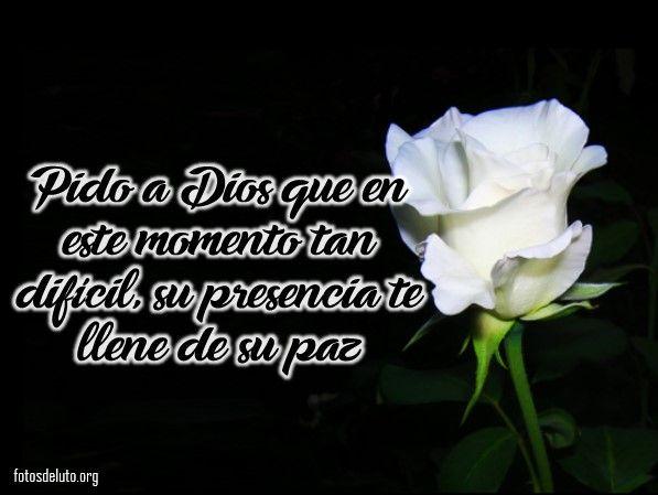 Rosas De Luto Para Whatsapp Imagenes De Condolencias Rosa