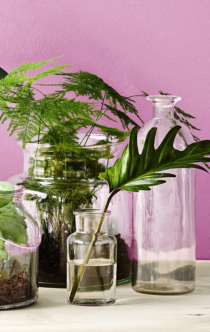 Smukke botanica glas som passer lige til forårets store trend. #inspirationdk #bolig #botanik #trend #boligtrend