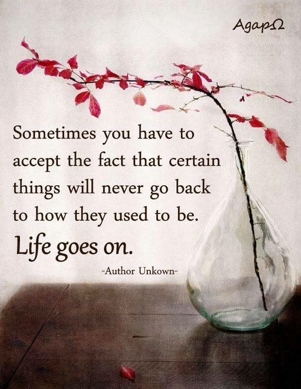Life Moves On Quotes Custom 526 Best Quotes Images On Pinterest  Life Lesson Quotes Live Life