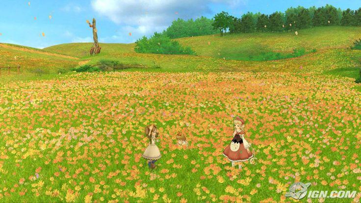 Tenuto flower field