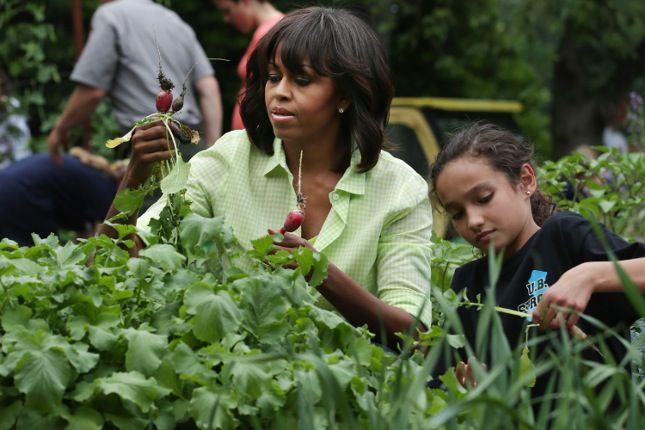 On Wednesday afternoon, Michelle Obama lifted a very green, organic middle finger to any unnamed future presidents who might want to fuck with her hard-won White House Kitchen Garden. The garden has been updated with steel, concrete, and stone, ostensibly so that a certain KFC-hoovering troglodyte would have a hard time getting rid of it quietly.