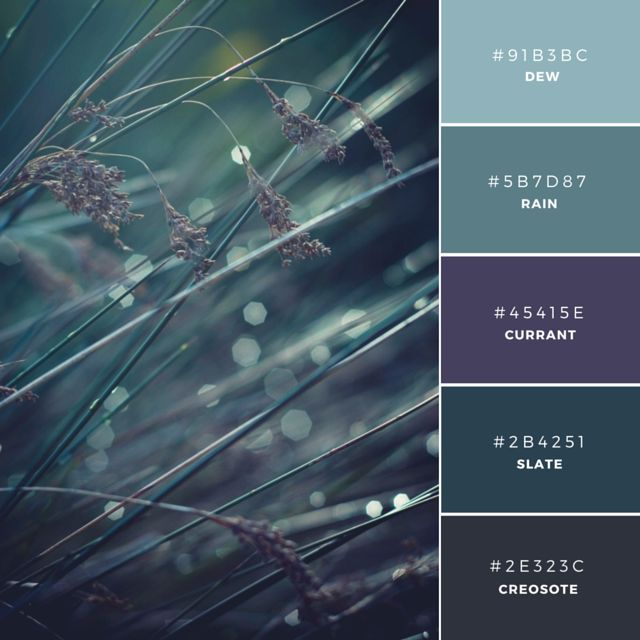 Morning Mist. Dense hues form a strong, masculine combination and the easy transition from swatch to swatch creates a calming effect. These colors are Analogous which means they sit near each other in the color wheel. The rich and dark tones would be well suited to the industrial or building industry.