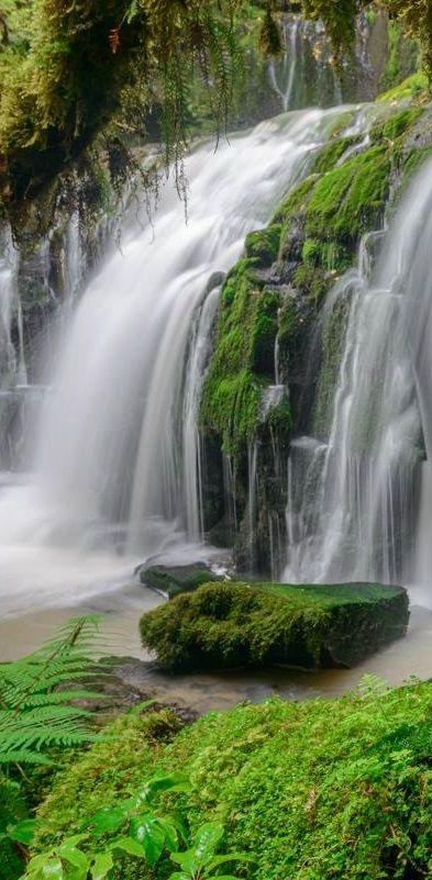 Purakaunui Falls, Catlin Coast, NZ