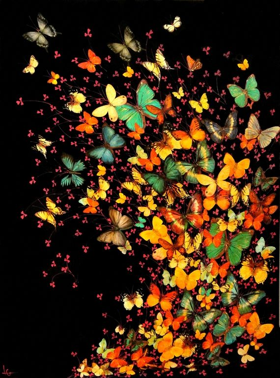 "Saatchi Online Artist: Lily Greenwood; Paint, 2013, Mixed Media ""Butterflies on Black"""