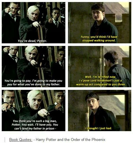 I love Harry. I so wish that this had been put into the movie. He had so many great lines from HBP
